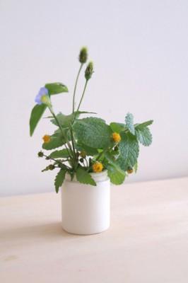 アルガンクリーム・・野の花を活ける花瓶として