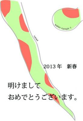 2013年賀